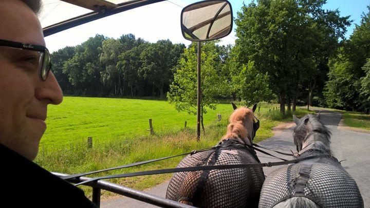 Grüße aus der Lüneburger Heide…. Ich habe die Pferde fest im Griff! :-)
